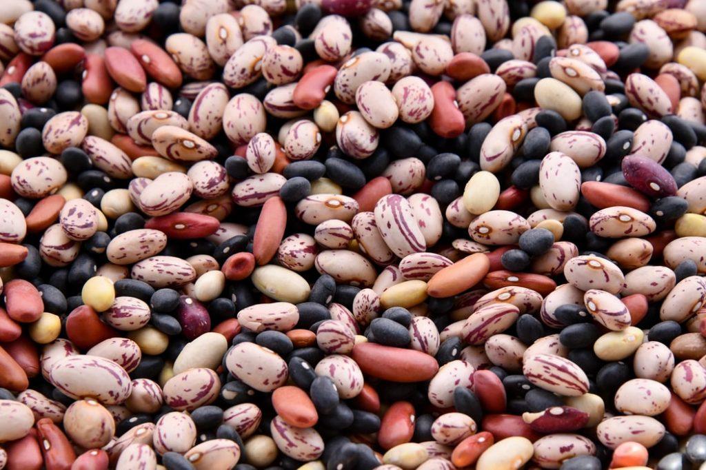 3 bean soup recipe | elika tasker