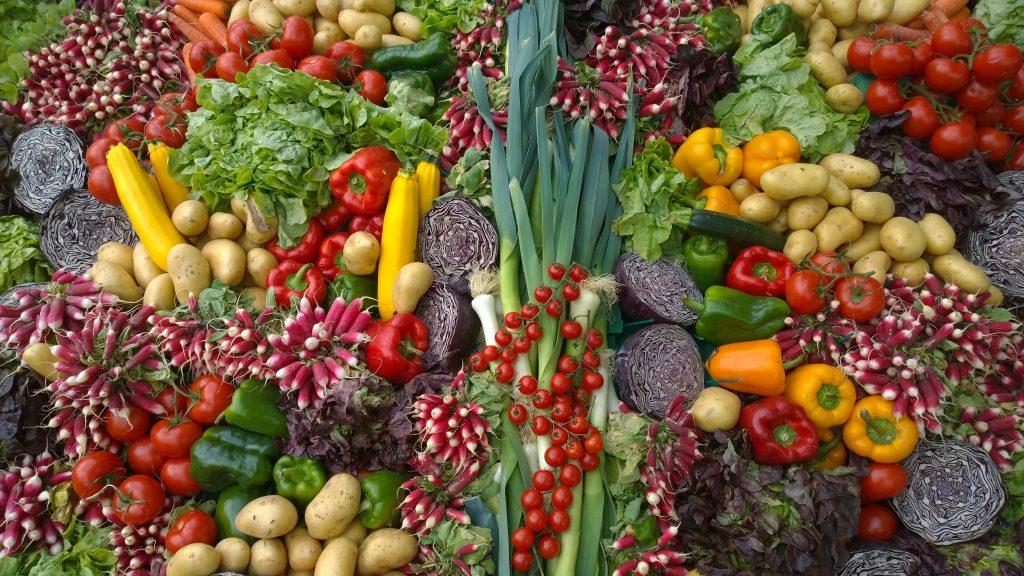 Organic Food_Elika Tasker